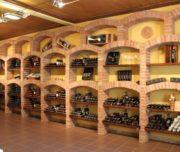 tuscan wine tour