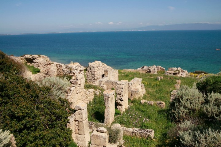Wild Sardinia coast