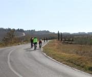 Italy bicycling vacation