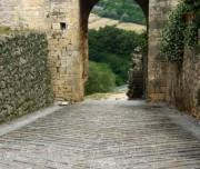 Pure cycling Siena