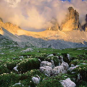 French alps and Provence