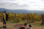 wineyards in tuscany by bike