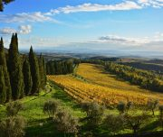 cycling with tuscany around