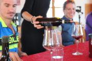 bike wine tour montalcino