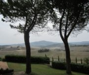 sangiovese wine tour