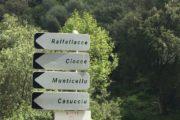 Corsica active tour