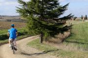 vita leta biking
