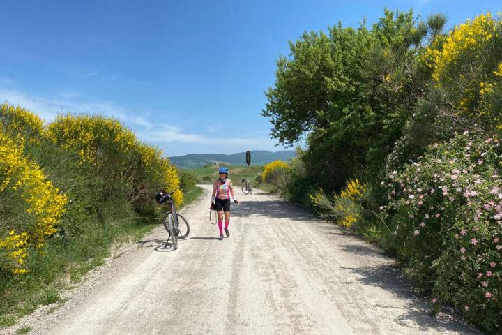 white roads of Tuscany