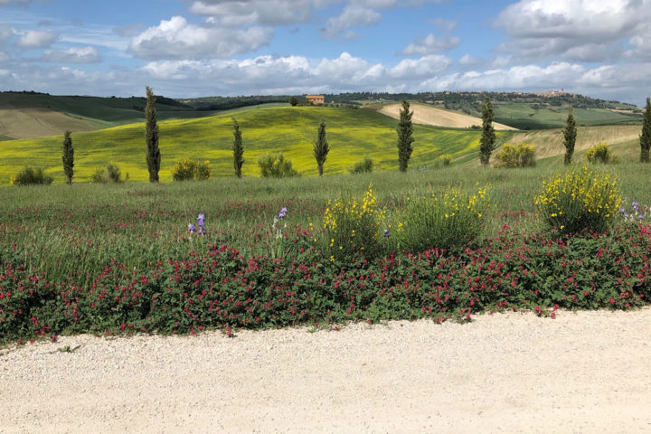 best cycling in Tuscany